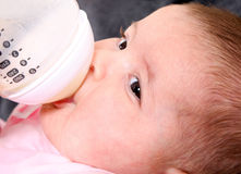Baby bottle feeding. Cute face of Caucasian Hispanic baby, infant drinking milk out of bottle stock photography