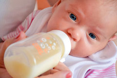 Baby during the bottle feeding. Royalty Free Stock Photo