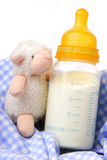 Baby bottle with milk. And soft toy royalty free stock images