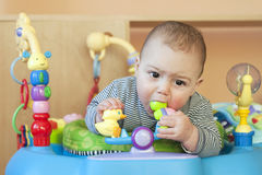 Baby in bouncer. Portrait of a cute 6 month old teething  baby, boy or girl, biting a plastic toy in a walker of bouncer Stock Photo