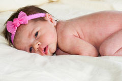Baby With A Bow royalty free stock images