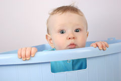 Baby from box Stock Image