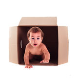 Baby and the box. A small child (baby) crawls out of the box isolated stock images