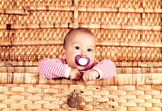 Baby in the box. Cute baby girl in the wooden box stock photography