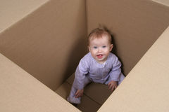 Baby in Box ready to be shipped Royalty Free Stock Photo