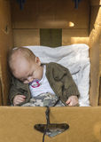 Baby in box Stock Images