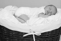 Baby Boy. Beautiful baby boy sleeping in a basket Royalty Free Stock Photos