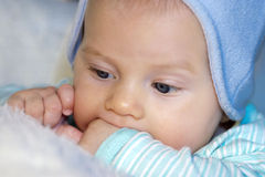 Baby boy. Portrait of a baby boy teething Stock Images