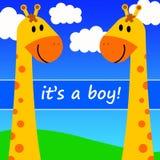 Baby boy. Celebrating the birth of a baby boy Royalty Free Stock Photos