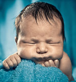 Baby boy Stock Photography