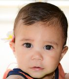 Baby boy. Portrait of a nine months old baby boy with a flower behind his ear Stock Photography