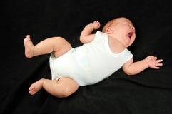 Baby boy Stock Image