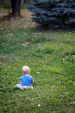Baby boy alone on grass. Baby boy sitting on the lawn, keeping himself busy Royalty Free Stock Images