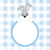 Baby boy announcement rabbit Royalty Free Stock Photo