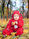 Baby boy in autumn leaves Royalty Free Stock Photography
