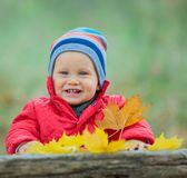 Baby boy in the autumn park Stock Photography
