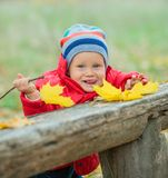 Baby boy in the autumn park Royalty Free Stock Images