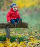 Baby boy in the autumn park Royalty Free Stock Photography