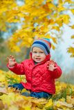 Baby boy in the autumn park Royalty Free Stock Photos