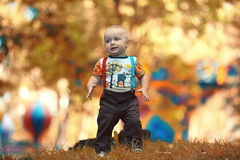 Baby boy in autumn park Stock Images