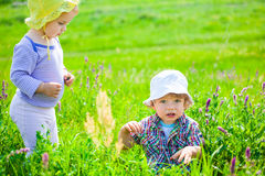 Baby boy and baby girl on a meadow Stock Photography