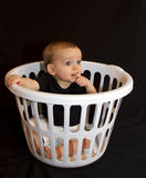 Baby Boy In A Basket Royalty Free Stock Images