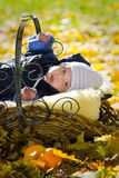 Baby boy in the  basket Stock Photography