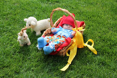 Baby boy in a basket on grass stock image