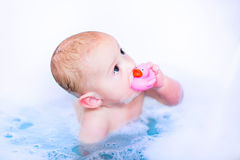 Baby boy in bath with a toy duck. Cute baby boy takin a bubble bath with foam playing in water with a rubber duck toy after shower stock image