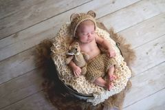 Baby Boy with Bear Hat and Plush Bear Toy. Six week old baby boy wearing a beige, crocheted, bear bonnet and holding a matching Teddy Bear. Shot in the studio on stock photos