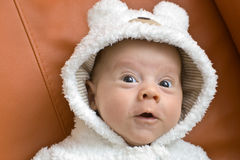 Baby boy in a bear suit Royalty Free Stock Images