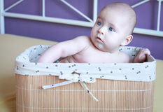 Baby boy with beautiful blue eyes in the basket on the bed Royalty Free Stock Photo