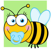 Baby Boy Bee Cartoon Character Royalty Free Stock Photo