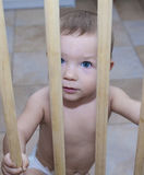 Baby boy behind the wooden safety gate of stairs Royalty Free Stock Image