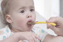 Baby boy being spoon fed Stock Image