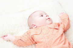 Baby boy on blanket. Cute Baby boy on blanket Stock Photography