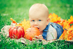 Baby boy with blue eyes in t-shirt and jeans romper lying on grass field meadow in yellow autumn leaves. Portrait of cute funny adorable blond Caucasian baby boy stock photo