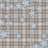 Baby boy brown pattern Royalty Free Stock Images