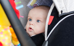 Baby boy in car seat stares. At the toy Stock Image