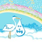 Baby Boy Card - A stork delivering a baby boy. Baby Boy Card - A stork delivering a baby boy, Vector Illustration Stock Photo