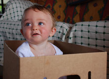 Baby boy in cardboard box. Looking up Royalty Free Stock Image