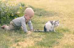Baby boy with a cat. Outdoor scene. Kids and pets concept Stock Photo