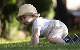 Baby boy crawl on the grass in the garden on beautiful spring day royalty free stock photography
