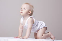 Baby boy Crawling As He Looks Up Royalty Free Stock Image