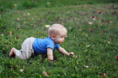 Baby boy crawling on grass. Bright baby boy crawling on green grass Stock Photography