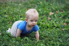 Baby boy crawling on grass. Bright baby boy crawling on green grass Stock Image