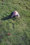 Baby boy crawling on grass Royalty Free Stock Photos