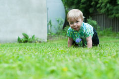 Baby boy crawling on the grass Royalty Free Stock Photography