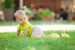 Baby boy crawling on green grass Royalty Free Stock Photos