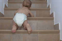 Baby boy crawling up the stairs Stock Images